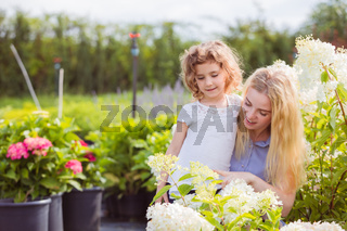 Mother and daughter choose the hydrangeas for their garden