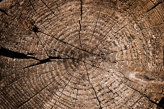 Weathered wooden cut