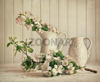 Still life of apple blossom flowers in vase