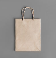 Blank craft paper bag