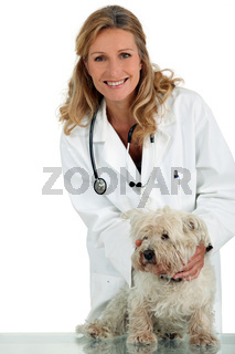 Veterinarian with small white dog
