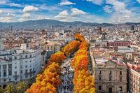 Barcelona Spain, high angle view city skyline at La Rambla street with autumn foliage season