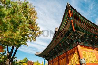 Autumn of Deoksugung Palace in Seoul, Korea