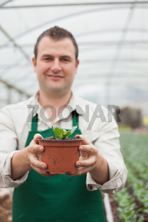 Cheerful gardener holding a plant