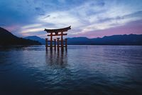 The floating Torii Gate of Itsukushima Shrine in ocean waves after sunset in colorful twilight in Miyajima, Hiroshima, Japan