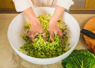 Cabbage kimchi and sauerkraut