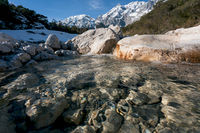Wild clear mountain river flowing over rocks through evergreen forest, Mieminger Plateau, Tirol, Austria
