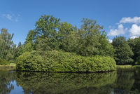 Rhododendronbusch im Landschaftsgarten und Schlosspark Lütetsburg