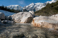Clear mountain river flowing over rocks through evergreen forest, Mieminger Plateau, Tirol, Austria