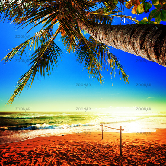Picturesque view of amazing tropical beach. Square composition.