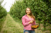 Smiling woman with basket of apricots in the garden