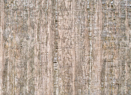 Holztextur II