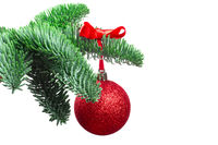 Christmas tree and red ball on white