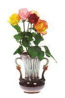 Fünf Rosen in der Vase