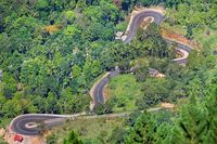 Road serpentine in a mountain rainforest