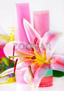 Fresh pink lily and cream