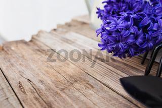 Gardening concept. Blue purple hyacinth flowers, pitchfork or rake and shovel