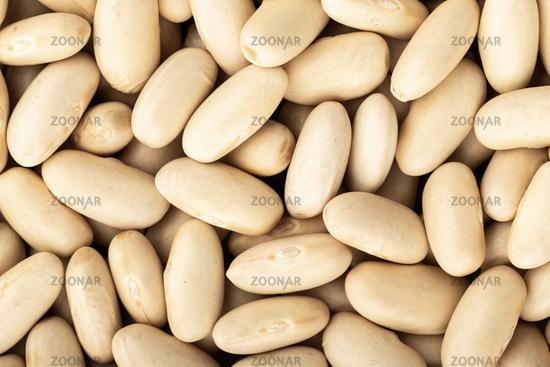 White bean background texture. Full frame