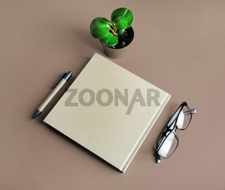 Brochure, glasses, pen, plant