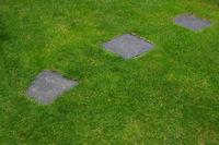 Steinpfad im Gras
