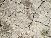 Dried up earth