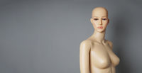 shop window mannequin or display dummy with bald head and naked torso