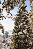 A21_0317_winter_ueberlingen
