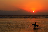 Silhouette of a horse and rider in shallow water on a scenic beach at sunset
