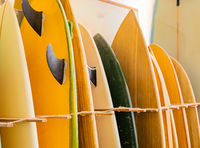 retro vintage surfboards lined up in a local surf shop