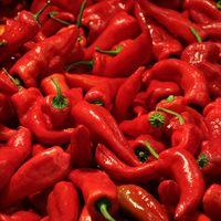 Rote Peperoni