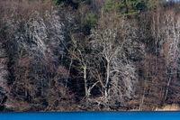Liepnitzsee im Winter