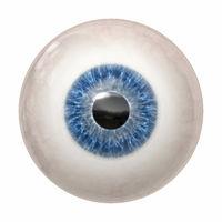 blue human iris
