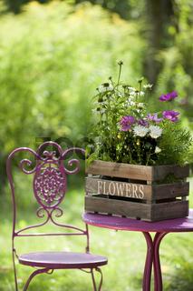 Herbstblumen in Holzkiste
