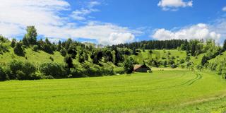 Traumhafte Landschaft im Schwarzwald