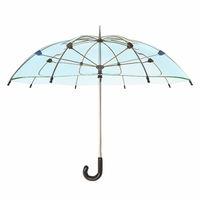 Opened transparent umbrella 3D