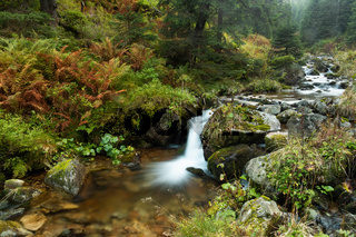 Waterfall splattering in pure green environment in fall