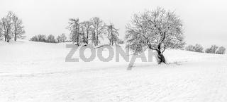 Winterlandschaft im Mittelgebirge