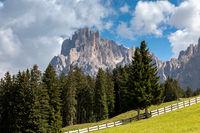 Auf der Seiser Alm, Alpe di Siusi, mit Blick auf den Langkofel, Sassolungo, Suedtirol