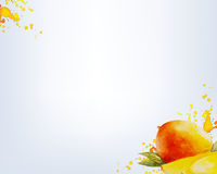 Watercolor Sweet Mango With Grey Background