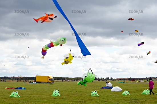 Drachenfestival