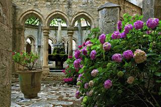 Klostergarten der Abbaye de Valmagne, Languedoc-Roussillon, France