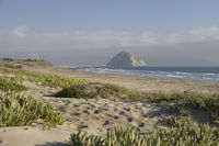 Morro Bay .View from dunes