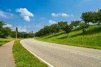 Leere Straße mit Kurve und Bürgersteig im Sommer