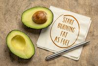 start burning fat as fuel, keto diet concept