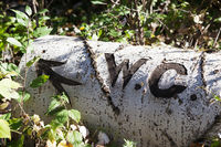 WC text with arrow cut with knife on bark of fallen tree