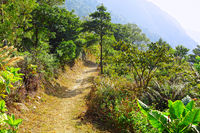 path for hiking