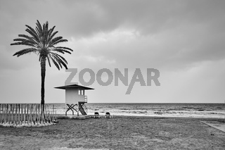 Desolate beach with palm and lifeguard tower
