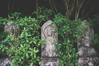 Three buddhist statues covered in green leaves at Daisho-in temple in Miyajima, Hiroshima, Japan
