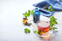 Black tea in glass transparent mug with mint leaves. Soothing tea, anti-stress