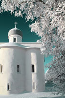 orthodox christian church amongst white branches